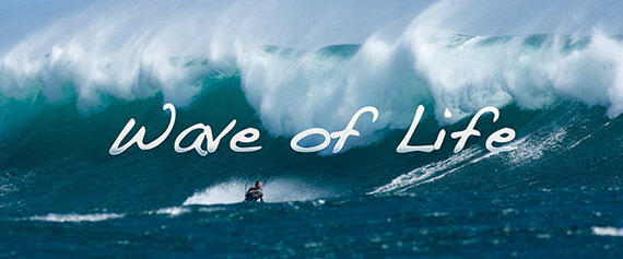 "My Film: ""Wave of Life"""