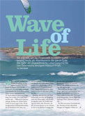 Wave of Life – My brandnew column ! -> photo 2